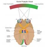 tratamento de doenças oculares preço Pedreira