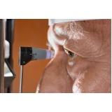 tratamento para glaucoma preço na Santa Cecília