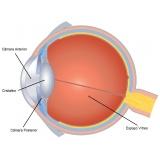 tratamento de doenças oculares